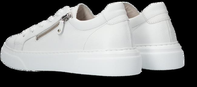 Witte GABOR Sneakers 314  - large