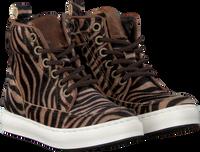 Beige PINOCCHIO Sneakers P1186  - medium