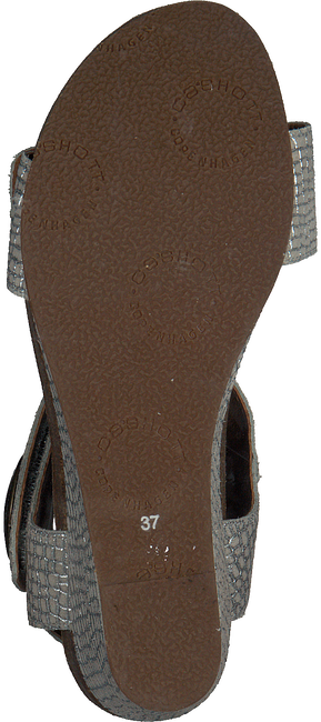 Witte CA'SHOTT Sandalen 8020 - large
