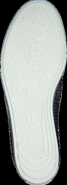 Blauwe PAUL GREEN Sneakers 4449  - large