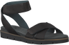 Zwarte CA'SHOTT Sandalen 15091  - small