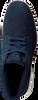 Blauwe TIMBERLAND Sneakers BRADSTREET CHUKKA  - small