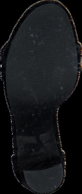 Zwarte STEVE MADDEN Sandalen CARRSON  - large