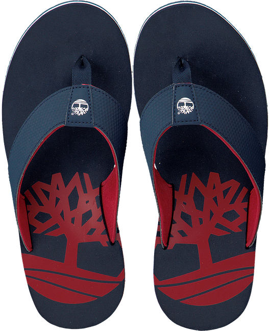 blauwe TIMBERLAND Slippers WILD DUNES SYNTH M THO  - large