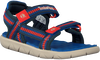 Blauwe TIMBERLAND Sandalen PERKINS ROW WEBBING SNDL  - small