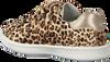 Beige BUNNIES JR Lage sneakers 220140  - small
