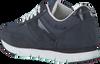 Blauwe CALVIN KLEIN Sneakers TEA - small