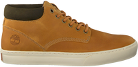 Camel TIMBERLAND Sneakers ADVENTURE 2.0 CUPSOLE CHUKKA  - medium