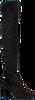 RAPISARDI OVERKNEE LAARZEN E1202 - small