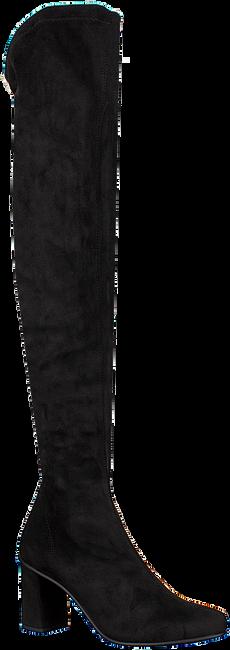 RAPISARDI OVERKNEE LAARZEN E1202 - large