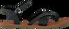 Zwarte TOMS Sandalen WM LEXIE SAND  - small