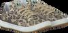 Multi NATURINO Sneakers 4062  - small