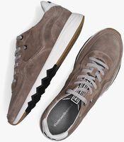 Taupe FLORIS VAN BOMMEL Lage sneakers 16397  - medium