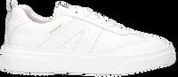 Witte COPENHAGEN STUDIOS Lage sneakers CPH103M  - medium