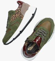 Groene PINOCCHIO Lage sneakers P1984  - medium