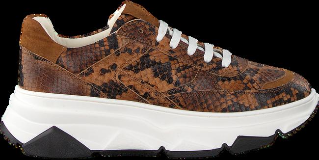 Cognac NOTRE-V Sneakers 608 - large