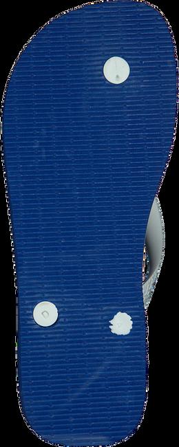 Blauwe HAVAIANAS Slippers BRASIL LOGO  - large
