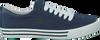Blauwe POLO RALPH LAUREN Sneakers HARRISON  - small