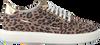 Bruine Verton Sneakers 0036  - small