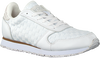 Witte WODEN Lage sneakers YDUN NSC  - small