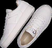 Witte CRUYFF CLASSICS Lage sneakers ROYAL  - medium