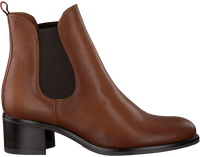 Cognac NOTRE-V Chelsea boots 46503FY  - medium
