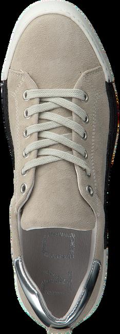 Beige ROBERTO D'ANGELO Sneakers BREST  - large