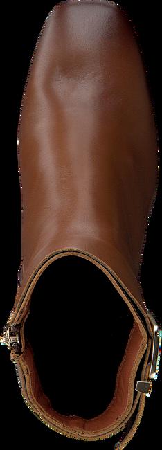 Cognac TOMMY HILFIGER Enkellaarsjes BASIC SQUARE TOE  - large