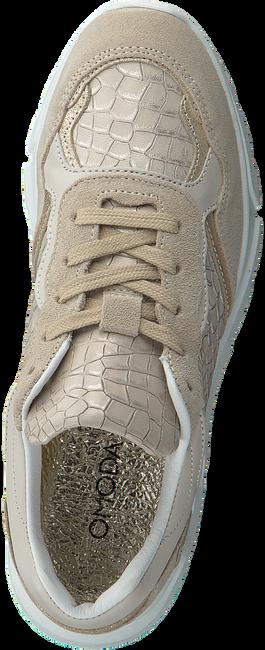 Beige OMODA Lage sneakers KATE - large