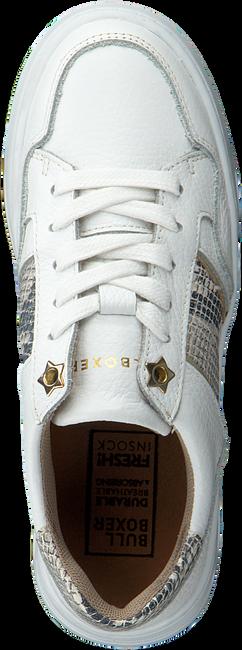 Witte BULLBOXER Lage sneakers ALQ000E5L  - large