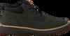 Groene TIMBERLAND Hoge Sneaker CROSS MARK CHUKKA  - small
