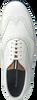 Witte FLORIS VAN BOMMEL Sneakers 19036  - small
