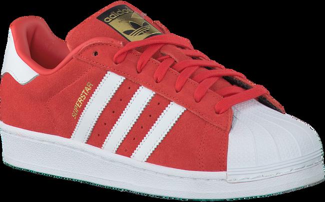Rode ADIDAS Sneakers SUPERSTAR HEREN  - large