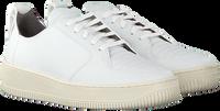 Witte EKN FOOTWEAR Lage sneakers ARGAN LOW SUTRI DAMES  - medium