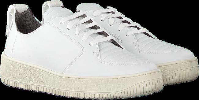 Witte EKN FOOTWEAR Lage sneakers ARGAN LOW SUTRI DAMES  - large