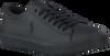 Zwarte POLO RALPH LAUREN Sneakers HARRISON  - small