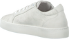 Witte RED RAG Sneakers 74162 - small