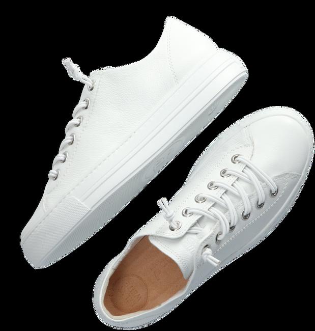 Witte PAUL GREEN Lage sneakers 4081  - large