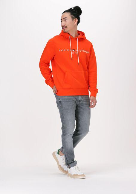 Oranje TOMMY HILFIGER Sweater TOMMY LOGO HOODY - large