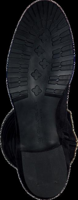 Grijze RAPISARDI Overknee laarzen PAULINE 2376 L302  - large