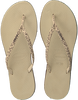 Beige HAVAIANAS Slippers YOU ANIMALS - small