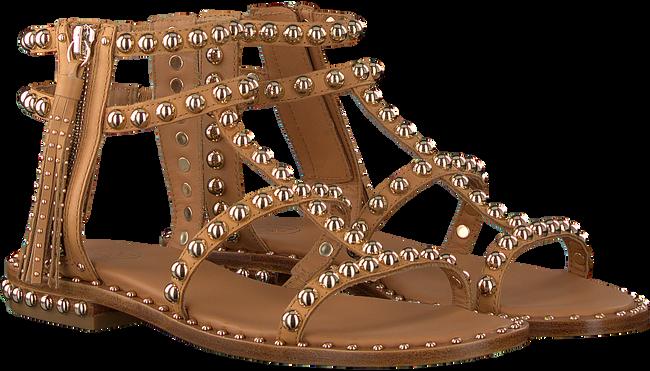 Camel ASH Sandalen POWER - large