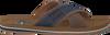 AUSTRALIAN SLIPPERS CATWYCK AT SEA - small