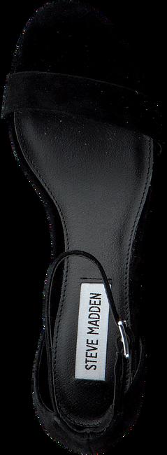 Zwarte STEVE MADDEN Sandalen IRENEE  - large