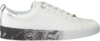 Witte TED BAKER Lage sneakers RELINA  - medium
