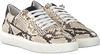 Beige Verton Sneakers 0036  - small