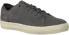 Grijze TIMBERLAND Sneakers ADV 2.0 CUPSOLE MODERN OX - small