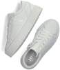 Witte HIP Lage sneakers H1804 - small
