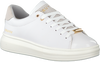 Witte CRUYFF CLASSICS Lage sneakers PURE  - small