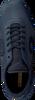 Blauwe CRUYFF CLASSICS Sneakers VANENBURG X-LITE  - small